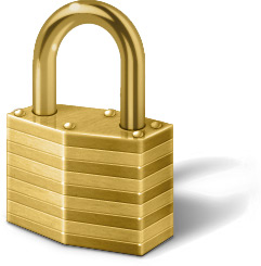 IT Security Lock